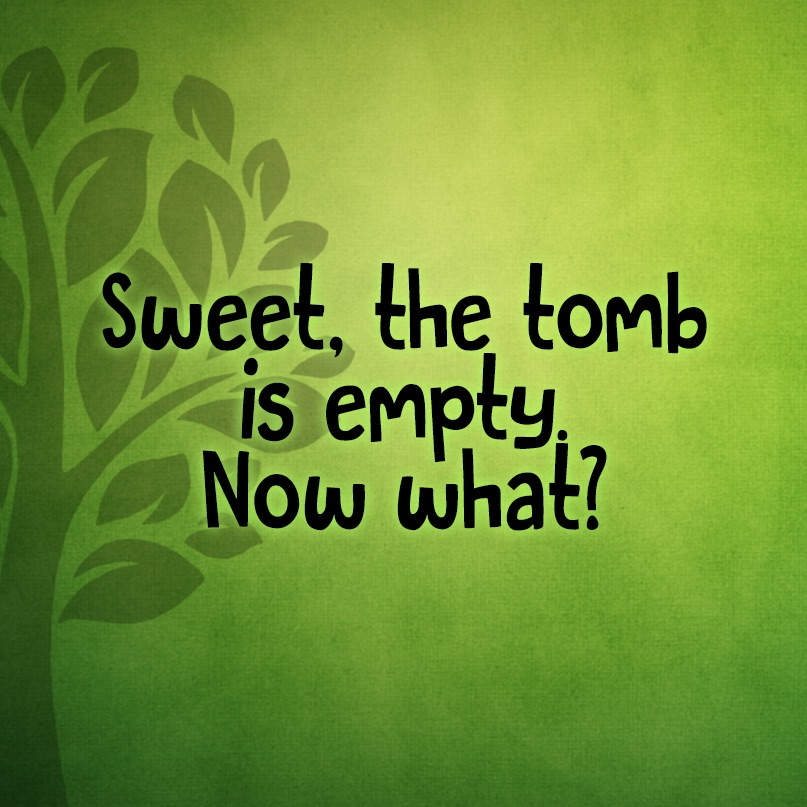 Sweet! The tomb is empty. Now what?