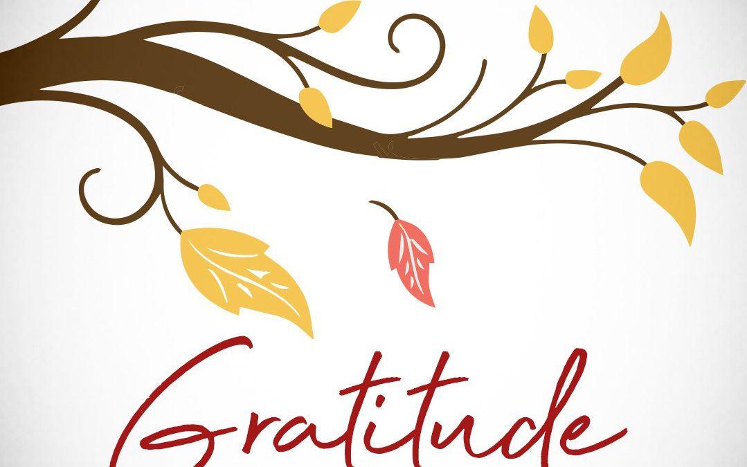 Gratitude – Part Four – The Myth of Emotions
